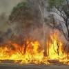 Bushfire Risk Increases