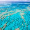 Grat Barrier Reef At Risk